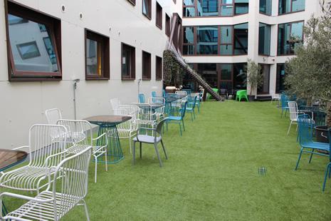 Stay-Academy-2-garden